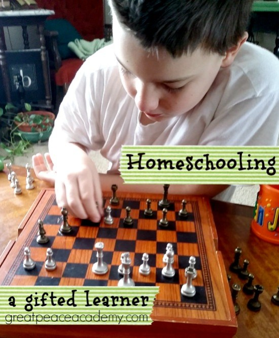 Homeschooling the gifted learning child. | Great Peace Academy