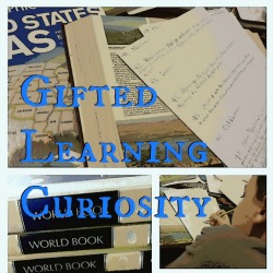 Gifted Learning Curiosity