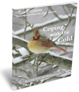 Coping with Cold 3D Cover 2