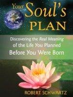 soul-plan