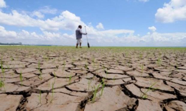 image-2010-11-2-7998726-70-seceta-afecteaza-mii-hectare-teren