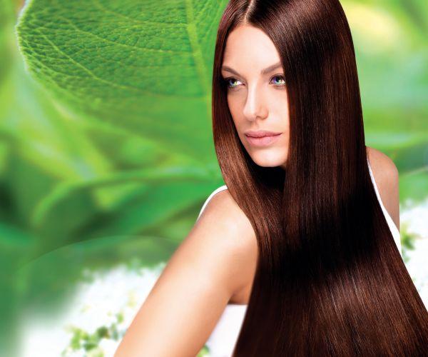 Best organic hair colors