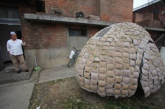 daihai fei s egg house 3