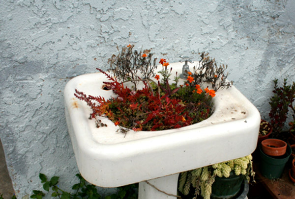 Wash basins and sinks