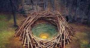 Nils-Udo_ClemsonClay-Nest2005USAS.100
