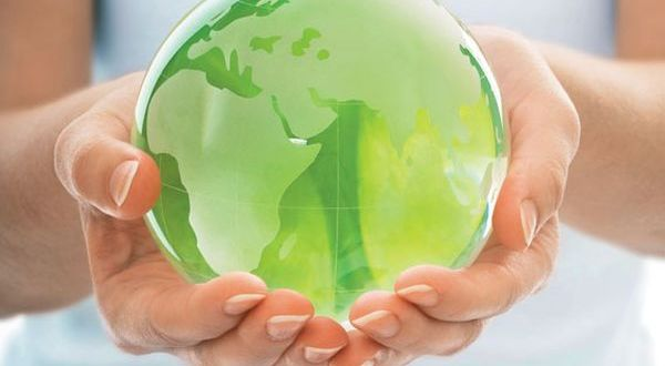 Cool business ideas to start from your eco-friendly home