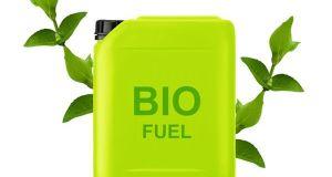 Biofuel  (4)
