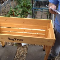 Building a VegTrug or Two