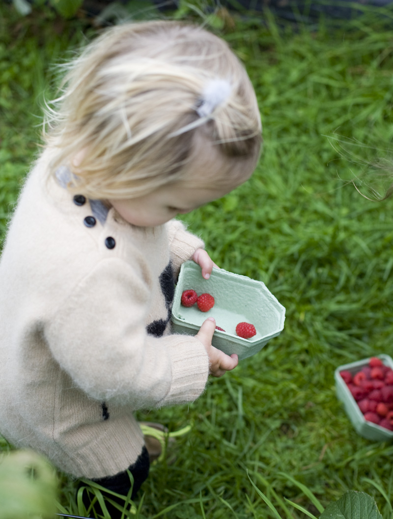 Elsa_raspberries