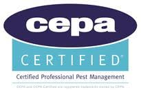 Pest Control |Expert Local Pest Control Near Me