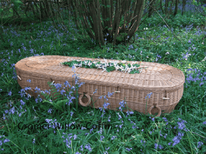 coffins02 300x225 Top 10 Save the Environment Ideas
