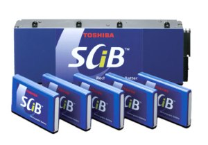 Big 821 300x209 Titanium Based Battery Cathode from Toshiba Could Double Range of EVs