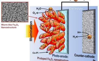 Schematic Diagram of PEC cell with wormlike hematite photoanode. (Credit: Copyright UNIST)