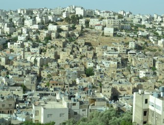 Seven Days in Hebron