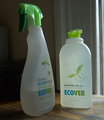 Ecover's Dishwashing Soap Make Us Feel a Little Dirty