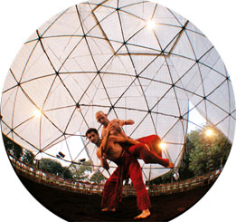 Eco Contact Gets a Green Spin at Bodyways and Vertigo Dance Festival
