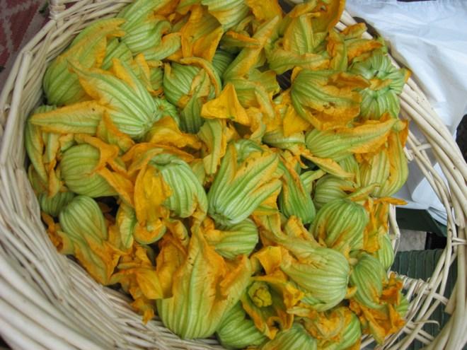 zucchini-flower-squash-blossom-basket