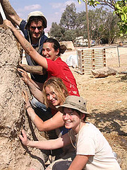 kibbutz lotan israel organic farm adobe building photo