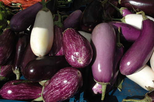 eggplants baba ganoushphoto
