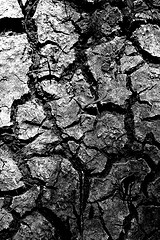 dry rivers caked mud photo