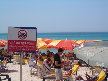 Environmental Issues and the Israeli Election Results