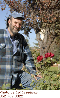 Shmita year, an introduction from Israel