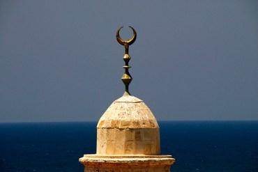 Chicago Muslims Launch Green Ramadan