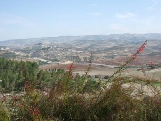 adullam-park-israel