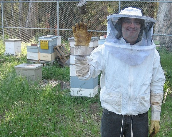israel-bee-keeper
