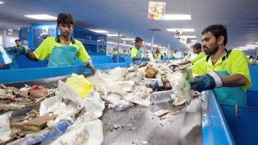 Canadian Man Revolutionizes Sharjah, UAE With Recycling