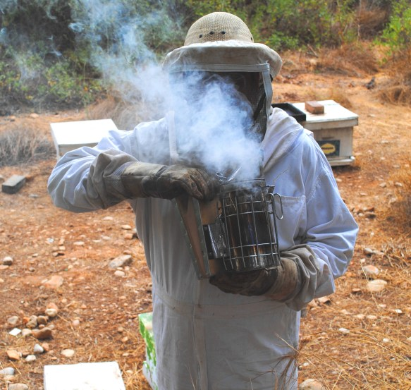 image-bee-smoker