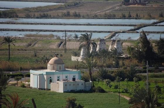 suez canal farm egypt