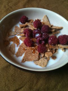 Make Your Own Cornflakes For A Crunchy, Greener Breakfast