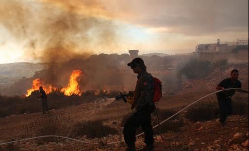 israel fire carmel