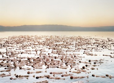 Naked Dead Sea Picture Released by Spencer Tunick