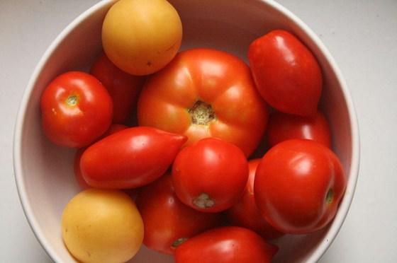 """""""fresh farm tomatoes"""""""