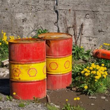 Greenwash Alert: Shell To Fund Environmental Education In Jordan