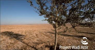 Sustainable Bedouin Farm, Wadi Attir, To Break Ground in the Negev