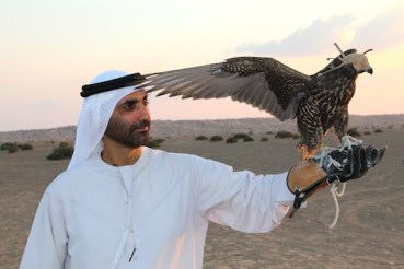 Nature's Wisdom Through the Photographer's Lens – the Green Sheikh