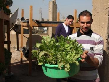 Rooftop Hydroponic Farms in Egypt Scrub the Air and Uplift Urban Poor