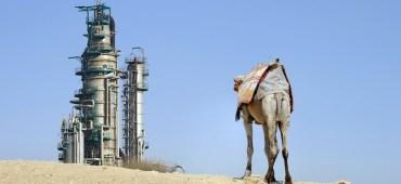 Saudi Arabia Dumps Oil in Time for US Election Season
