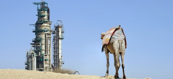 camel tied in front of oil refinery, in Saudi Arabia
