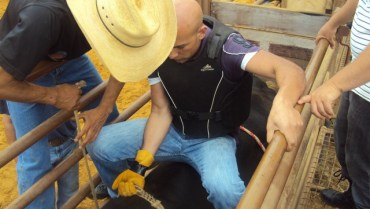 Lebanon's cowboys are made at El Rancho outside of Beirut