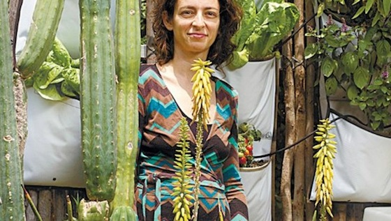 Vertical Gardening Celebrated in Tel Aviv