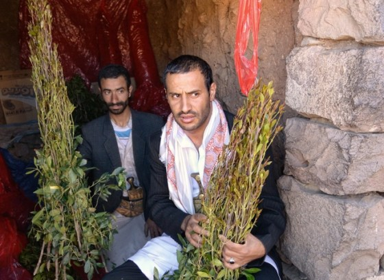 khat, ghat, qat dealers in yemen