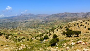 Lebanon to Restore Forests