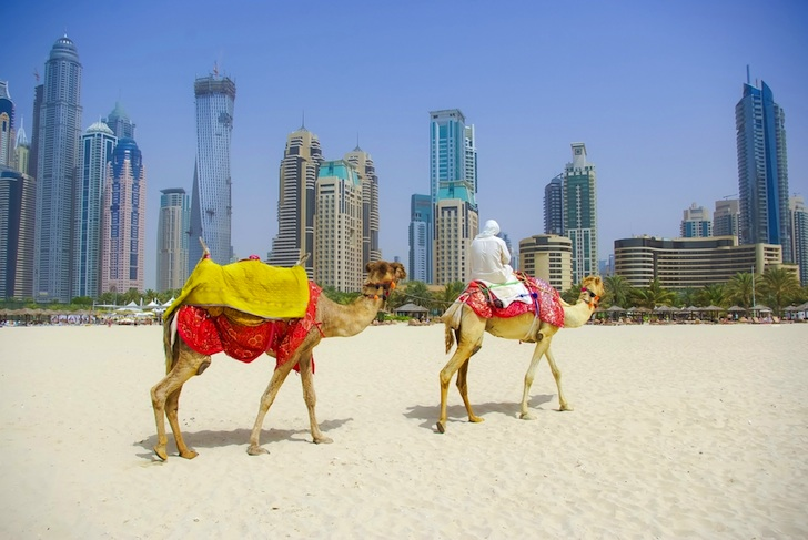 Oil-Rich UAE Leads Emissions Accountability