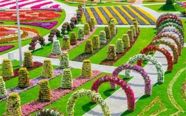 Dubai Set to Grow World's Largest Vertical Garden