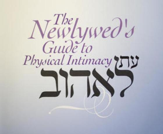 The Newlywed's Guide to Physical Intimacy, kosher sex