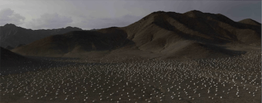 Shi Shaoping Depicts China's Desert Scenes with Eggs